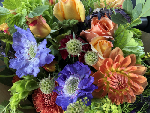 Seasonal British Bright funeral flowers in York and Hull